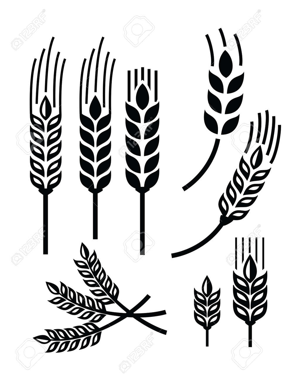 vector black illustration of wheat icon on white - 33407174
