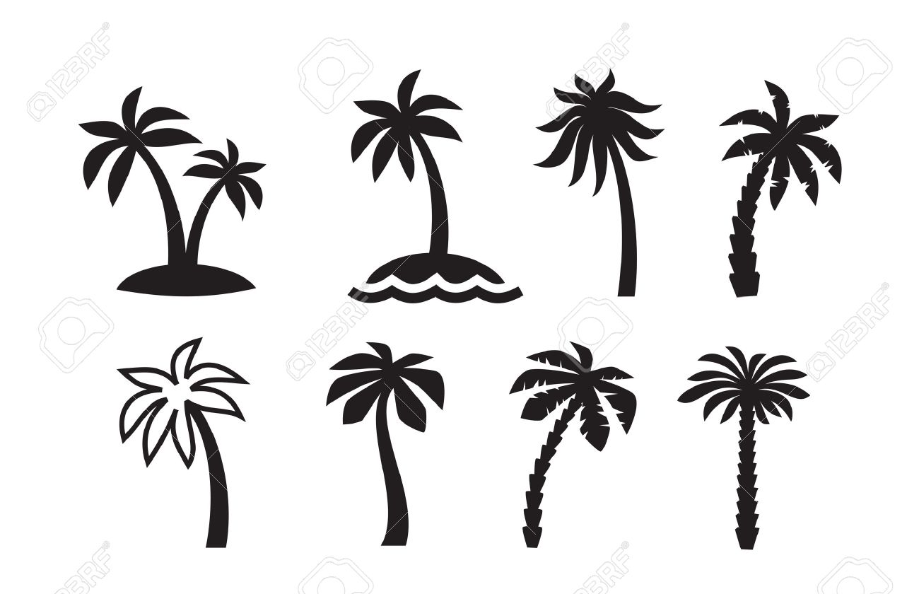 16 896 coconut tree stock vector illustration and royalty free