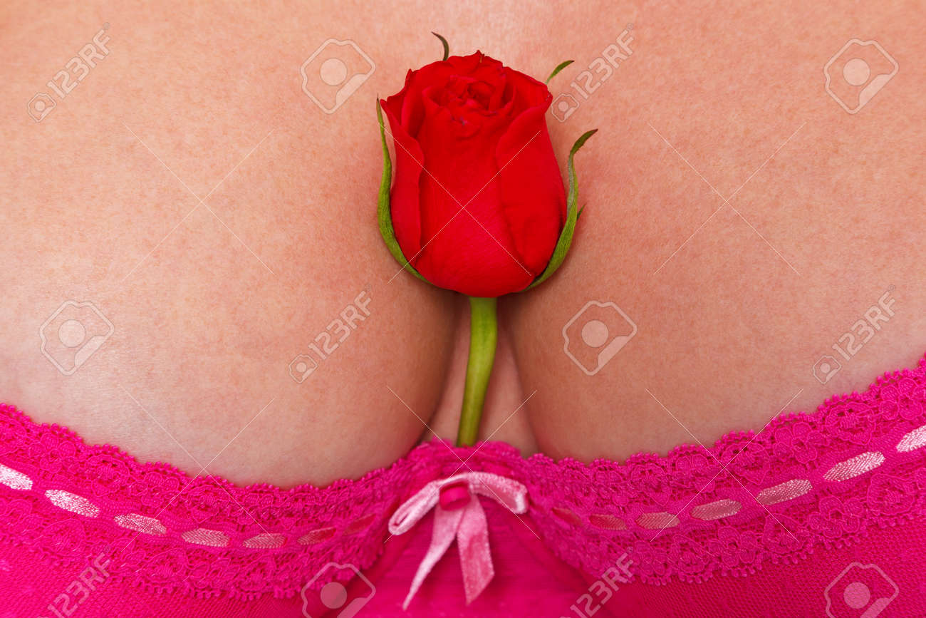 A single red rose in the cleavage of a womans breasts who is wearing a sexy pink lace bra. Stock Photo - 16970724