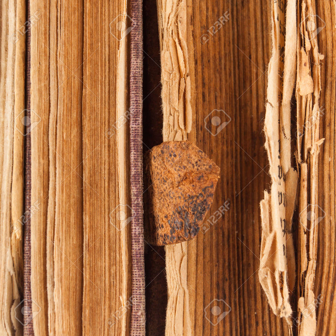 Old books pages as a background Stock Photo - 16984317