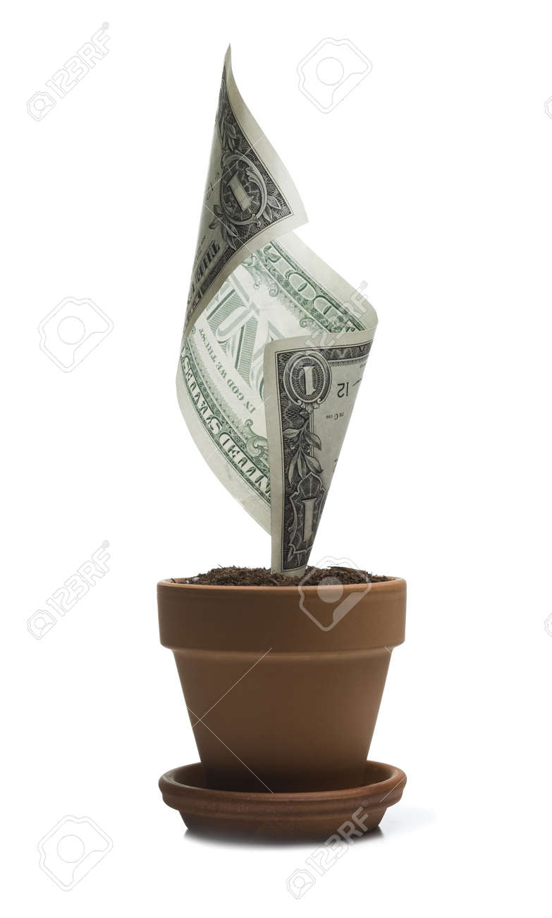 An American One Dollar Bill Growing In A Flower Pot Stock Photo