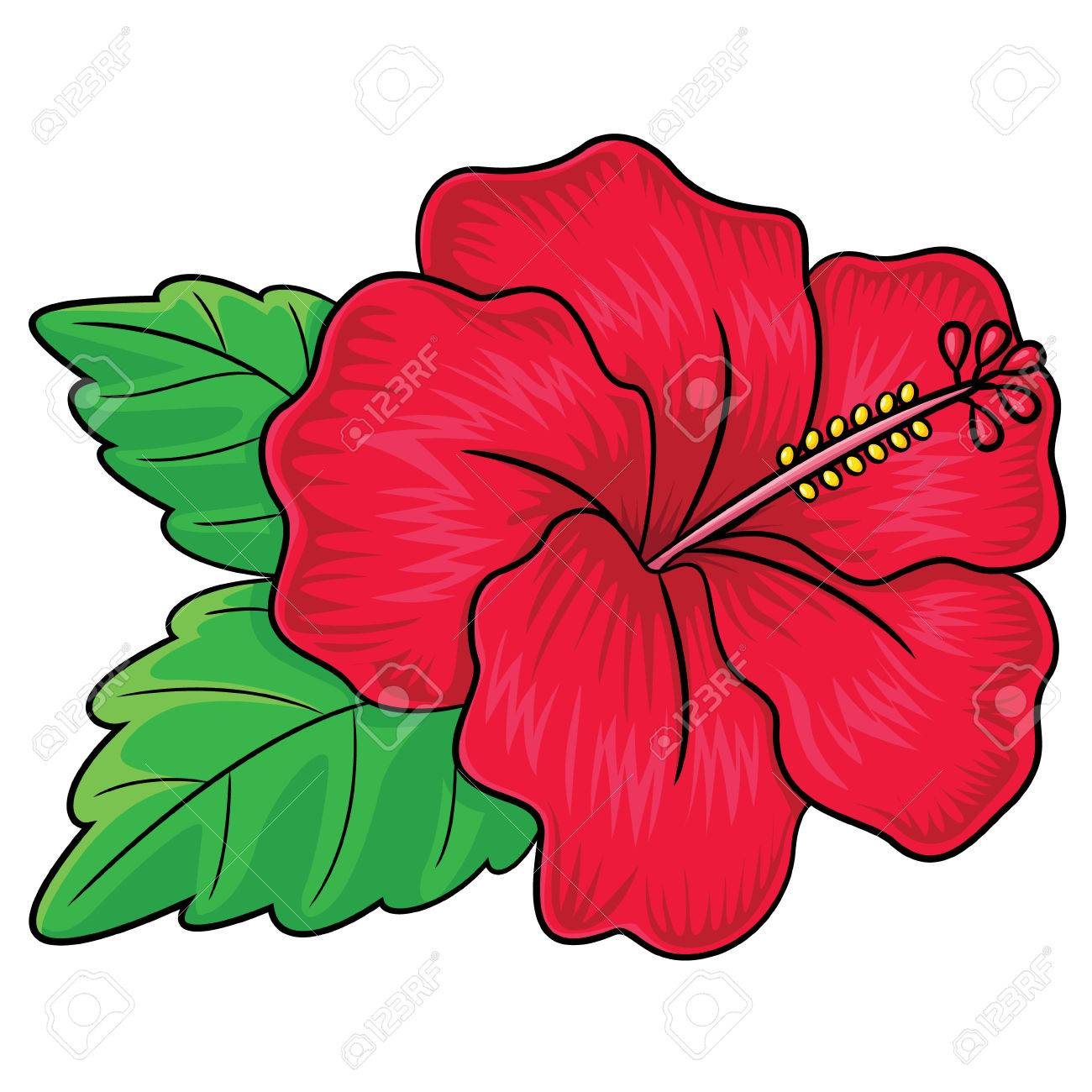 Illustration Of Cute Cartoon Hibiscus Flower Royalty Free Cliparts