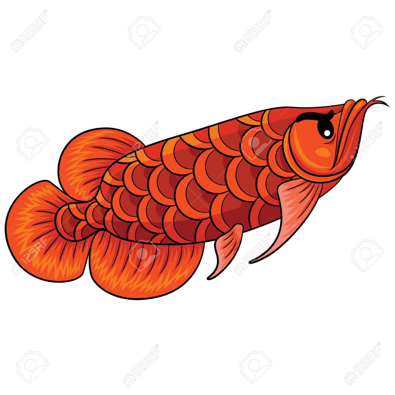Illustration Of Cute Cartoon Arowana Fish. Royalty Free Cliparts ...