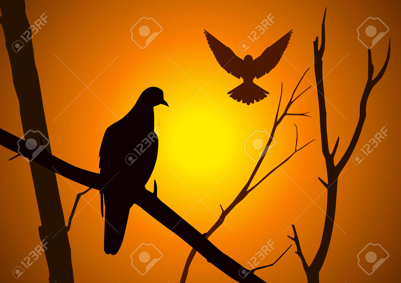 Silhouette illustration of birds Stock Vector - 8537820