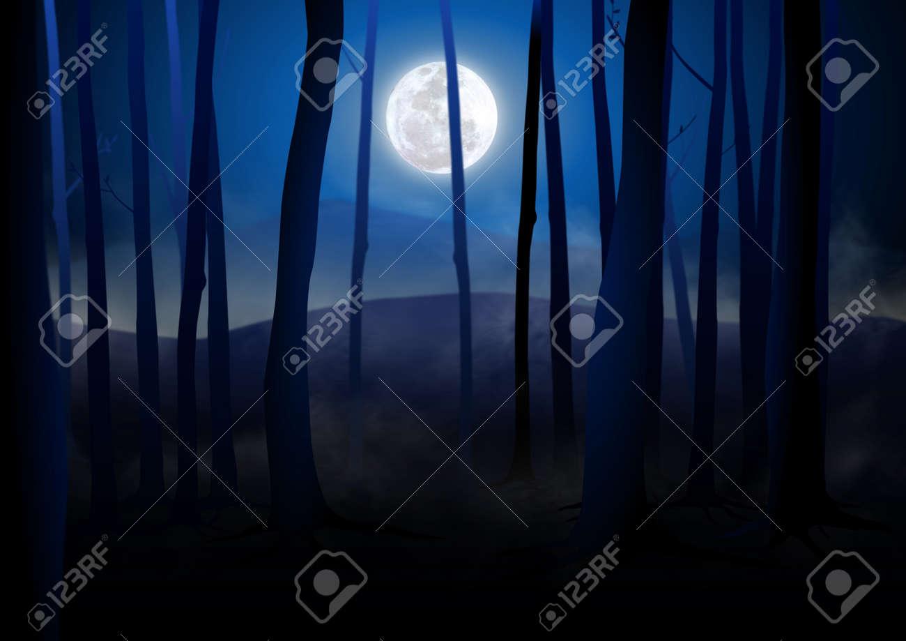 Dark Woods and Full Moon  Creepy Woods Moon