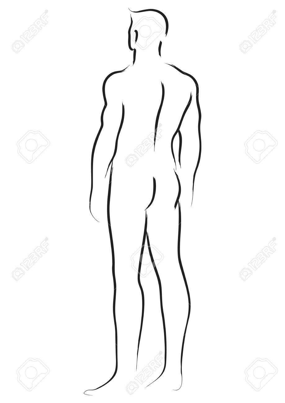 Ziemlich Männliche Anatomie Für Künstler Bilder - Anatomie Von ...