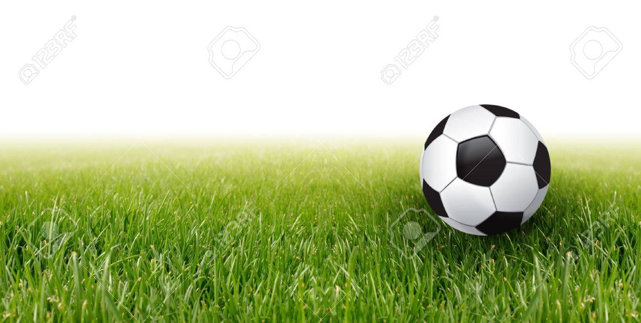 soccer football and green grass Stock Photo - 8446484