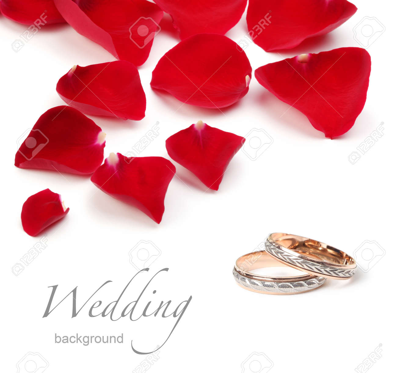 Wedding Rings And Rose Petals Stock Photo Picture And Royalty Free