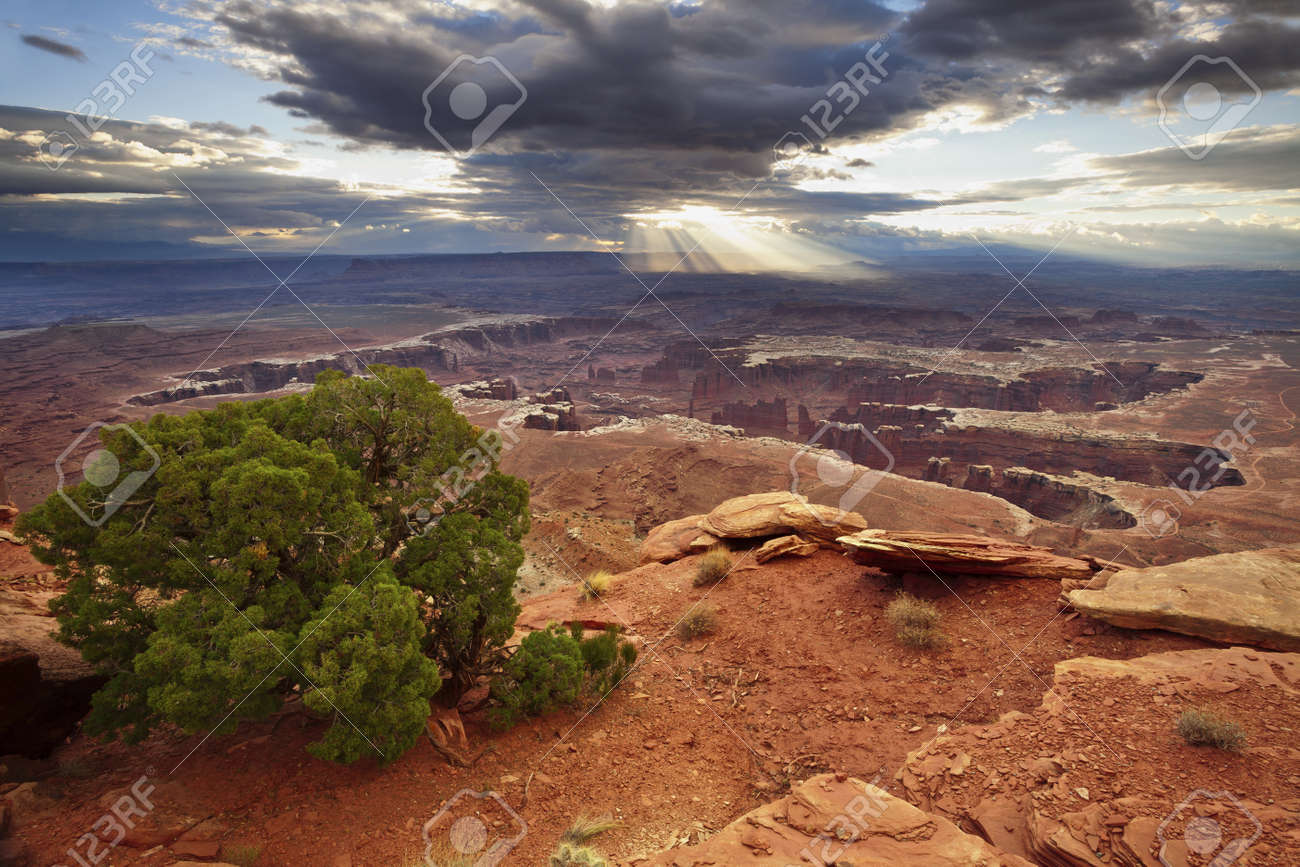 Grand View Point. Grand View Point overlook in Canyonlands National Park, Utah, USA. Stock Photo - 16307055
