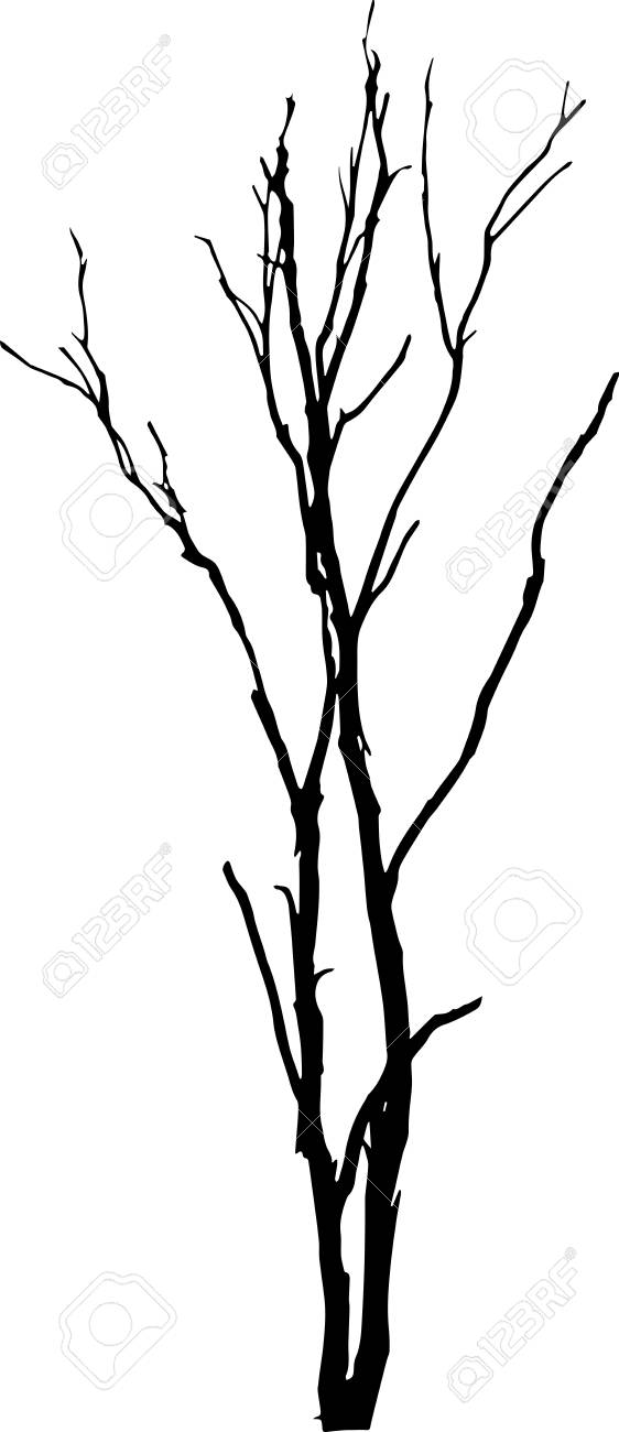 dead tree without leaves vector royalty free cliparts vectors and rh 123rf com dead tree vector free