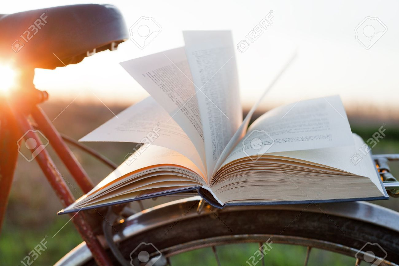 reading a book outdoors to relax - 14053526