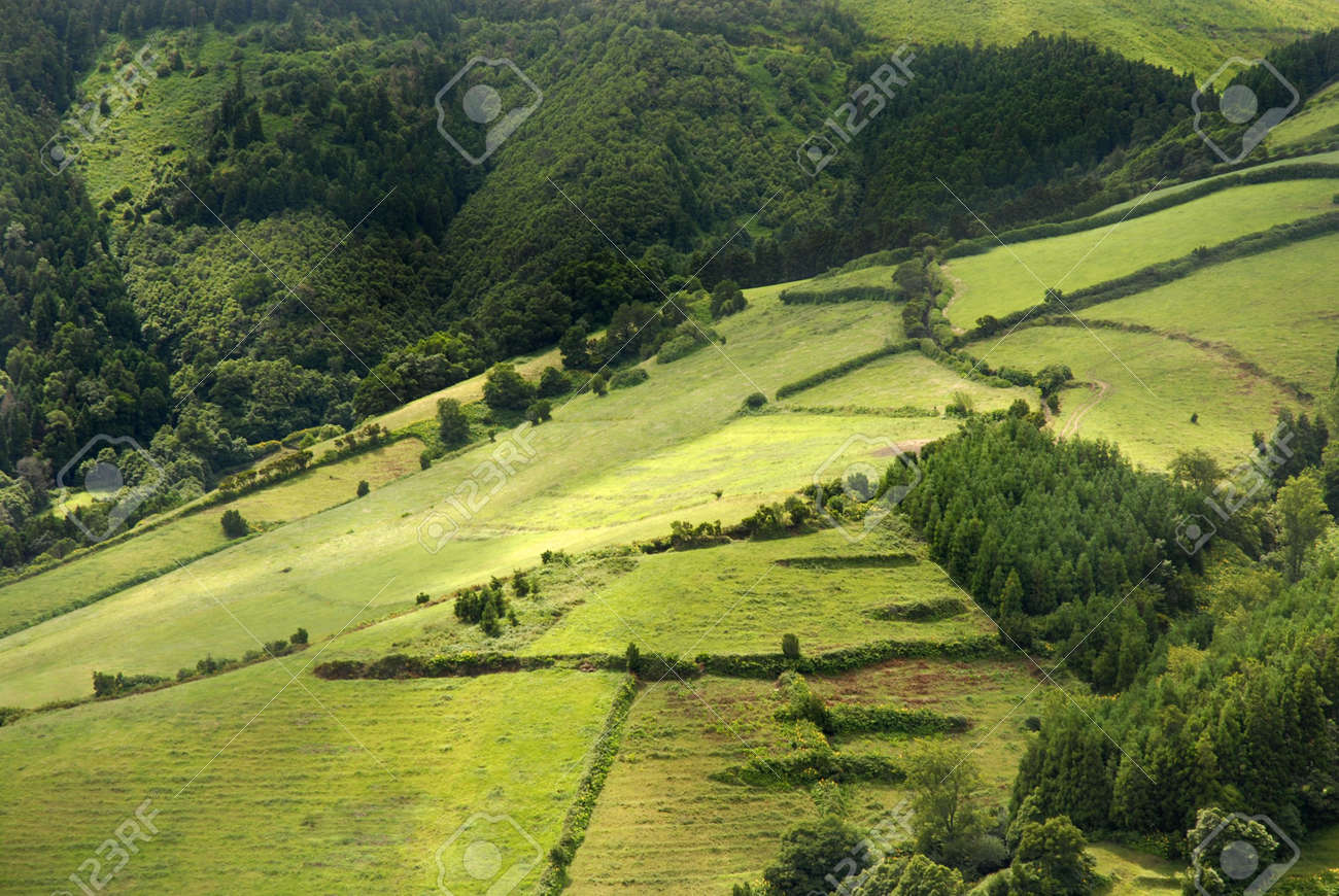 azores natural landscape in s miguel island Stock Photo - 2715570