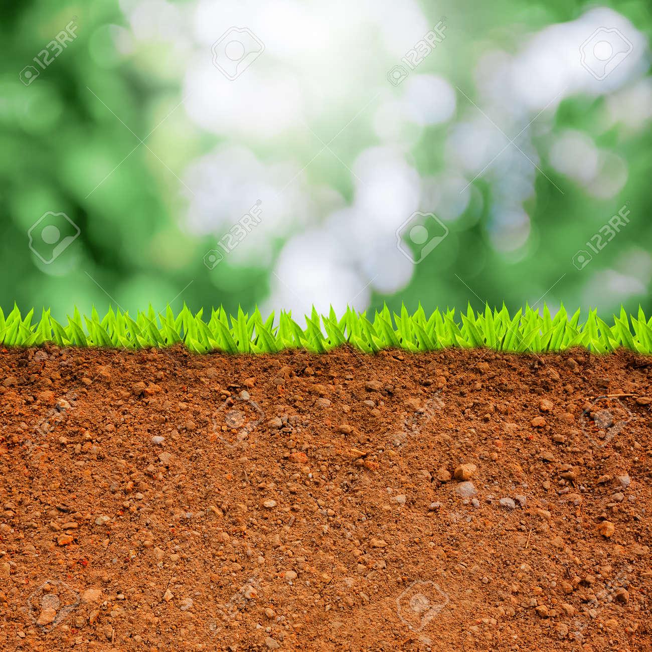 草とグリーンのボケに対して土壌...