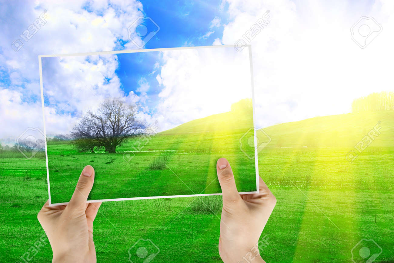 Hand holding photo of field of green grass and tree on background with sunrise Stock Photo - 4868381