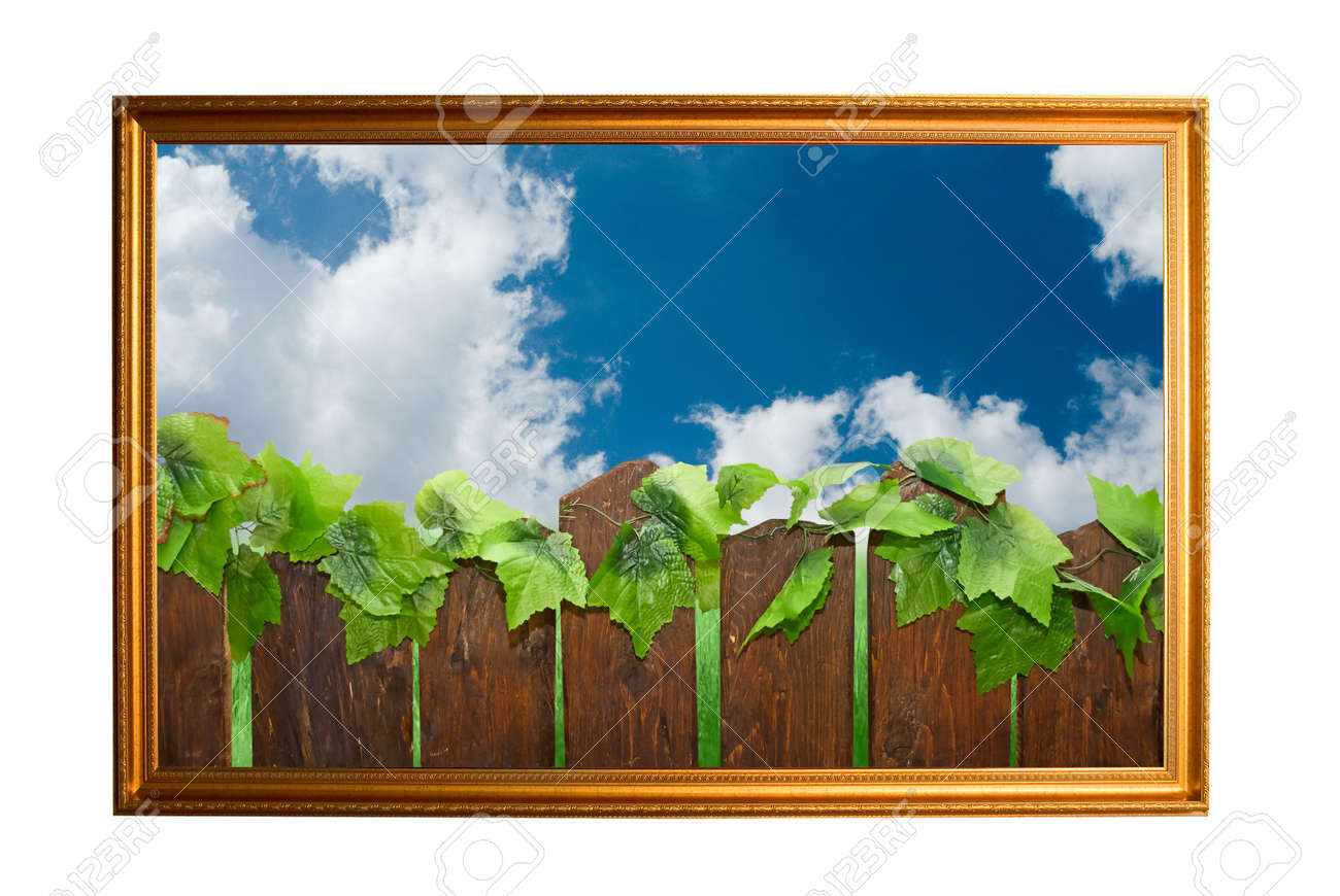 Picture of wood paling on bkue sky background Stock Photo - 5099332
