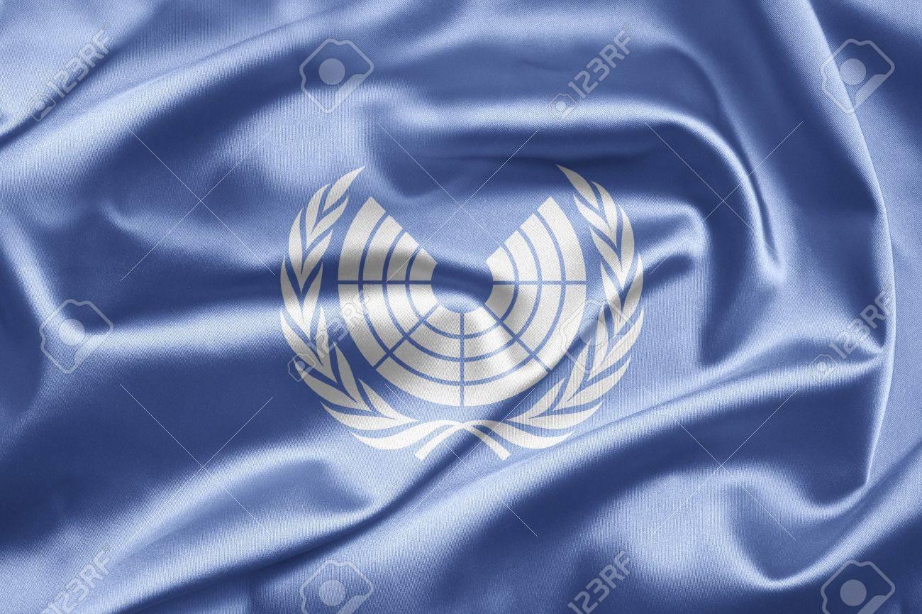 国際連合議会会議