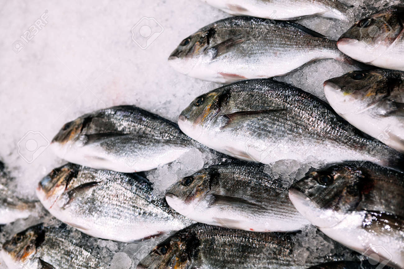 Fish on the ice in supermarket . Seafood for sale . Catch of winter fishing - 167986581