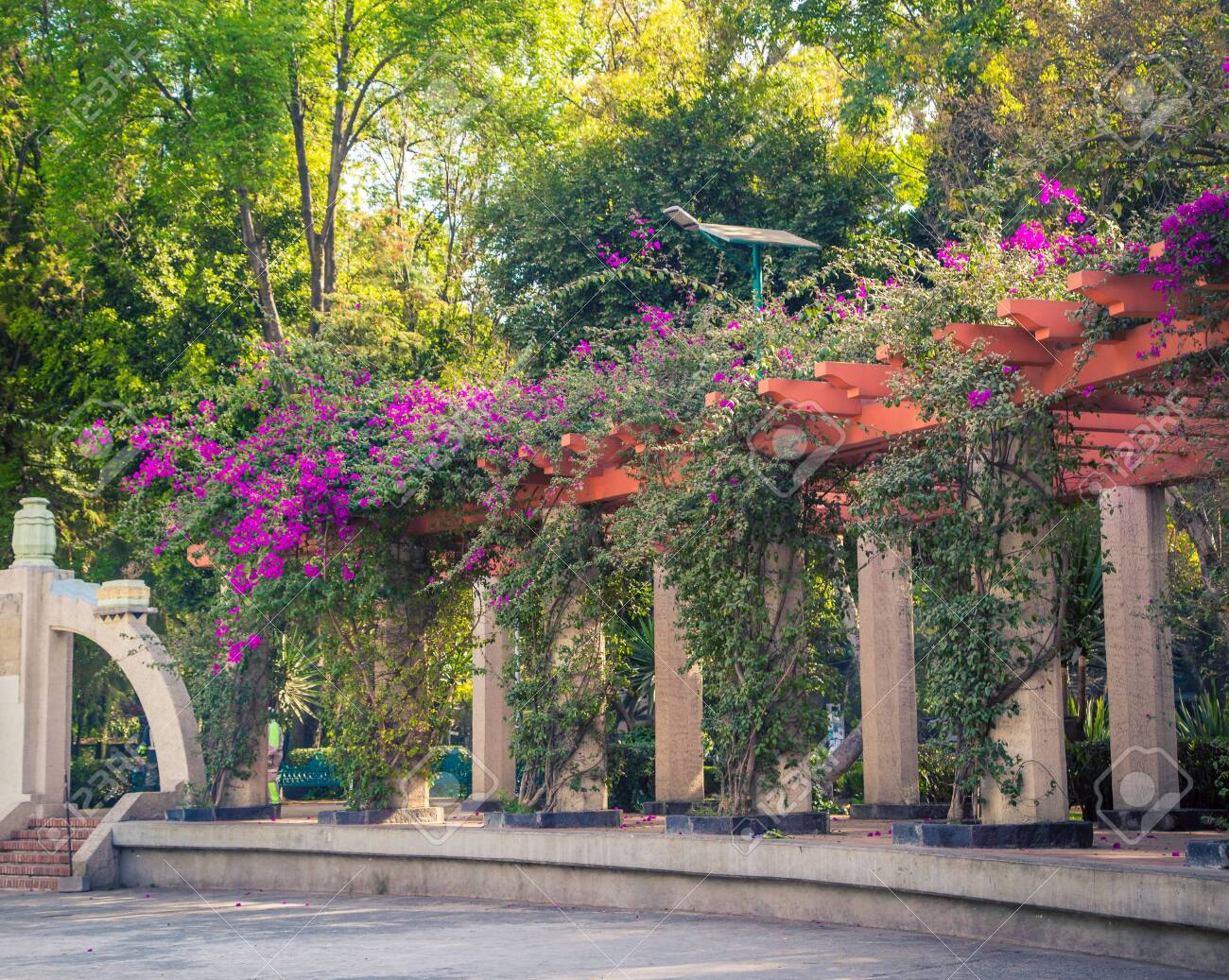 Garden Trellis In A Park Stock Photo Picture And Royalty Free