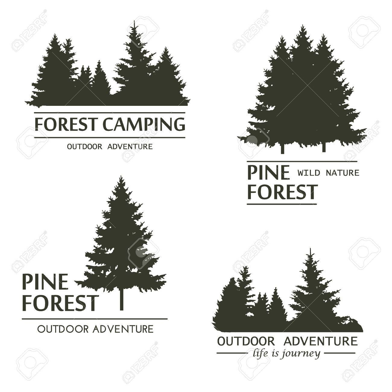 Fir trees silhouette . Pine plant wood branch natural forest silhouette. Trunk environment deciduous pine trees silhouette vector. Forest growth seasonal. Vintage forest design template. - 66917403