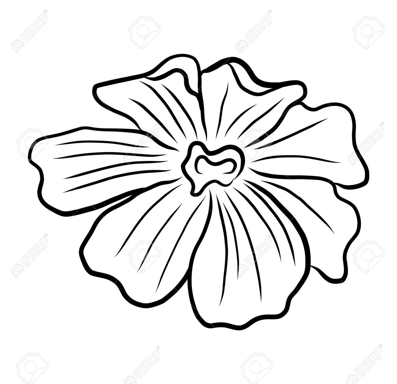 Hand-drawing floral background. Line art flower - 172399824