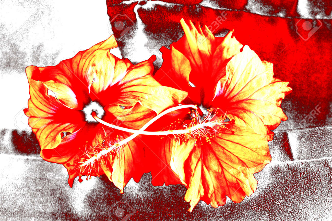 Fantastic flowers abstract as a nice background. Stock Photo - 1628738
