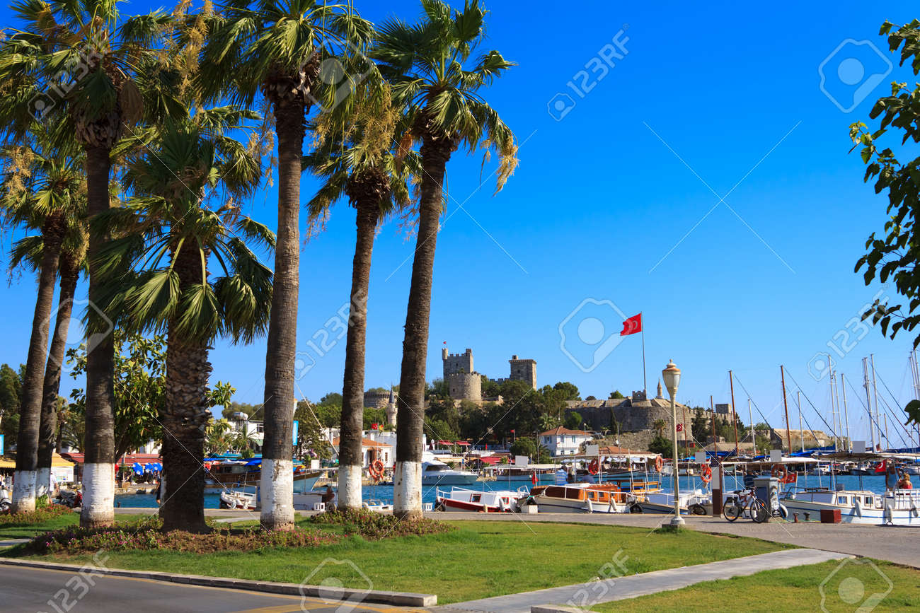 Nice view of the historic Bodrum Castle with palm trees Stock Photo - 12065552