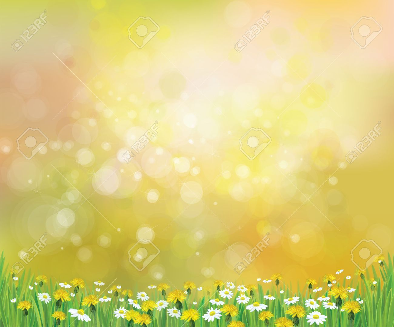 Vector nature spring background with chamomile and dandelions - 25125755