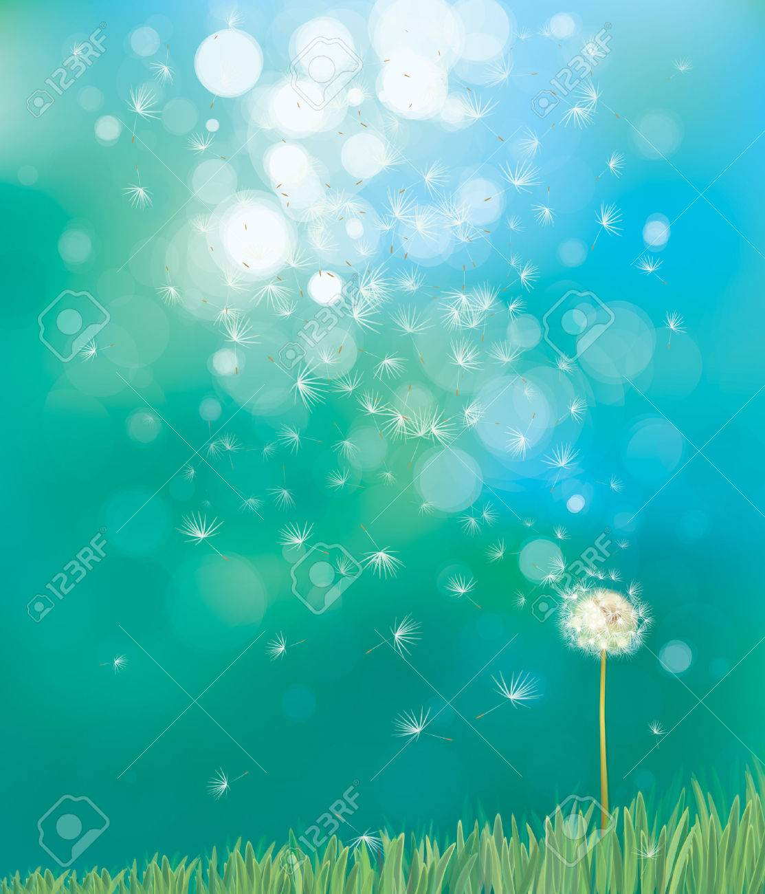 58ae083ca4594 Vector Of Spring Background With White Dandelion Royalty Free ...