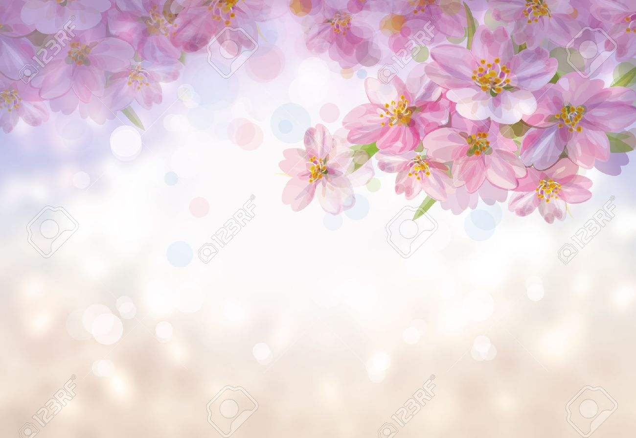 spring flowers background stock photos u0026 pictures royalty free