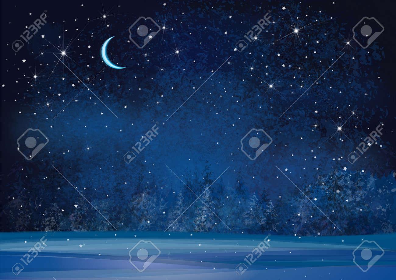 Vector winter wonderland night background. - 47206848