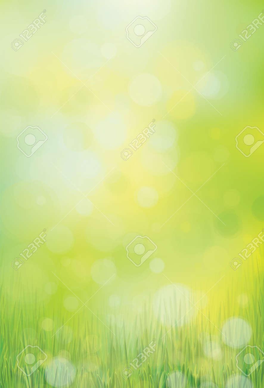 Vector green, bokeh, nature background. - 52477578