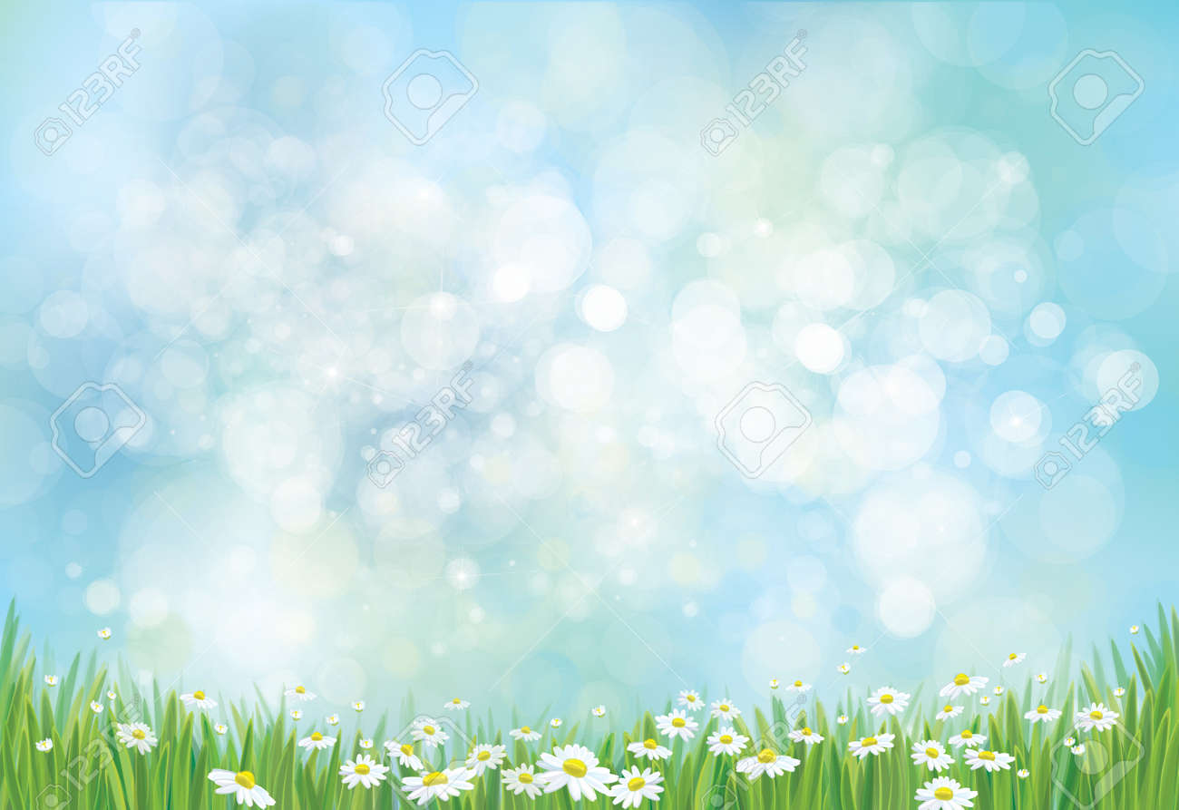 Vector nature background. - 58767758