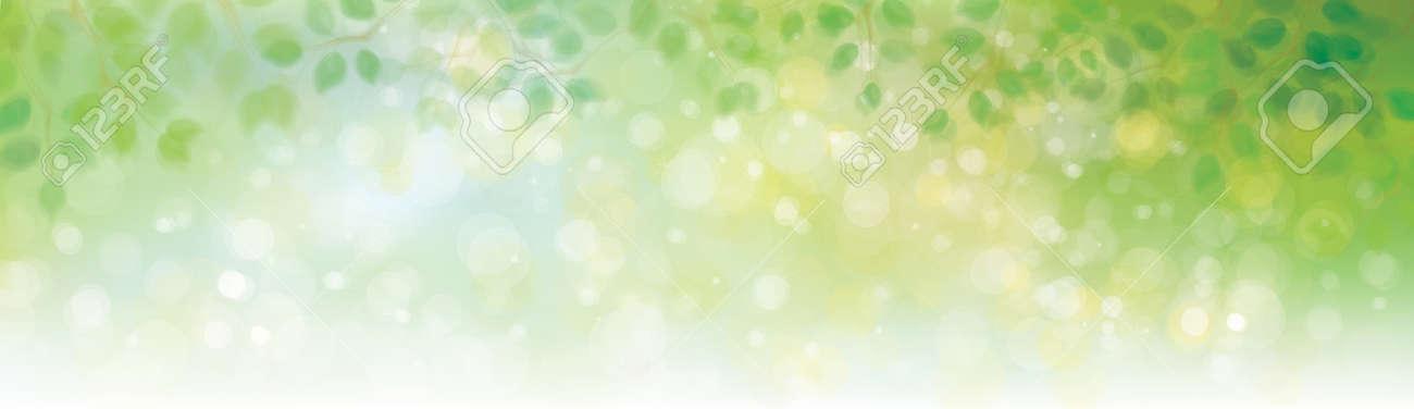 Vector green leaves border on sunshine background. - 70729442