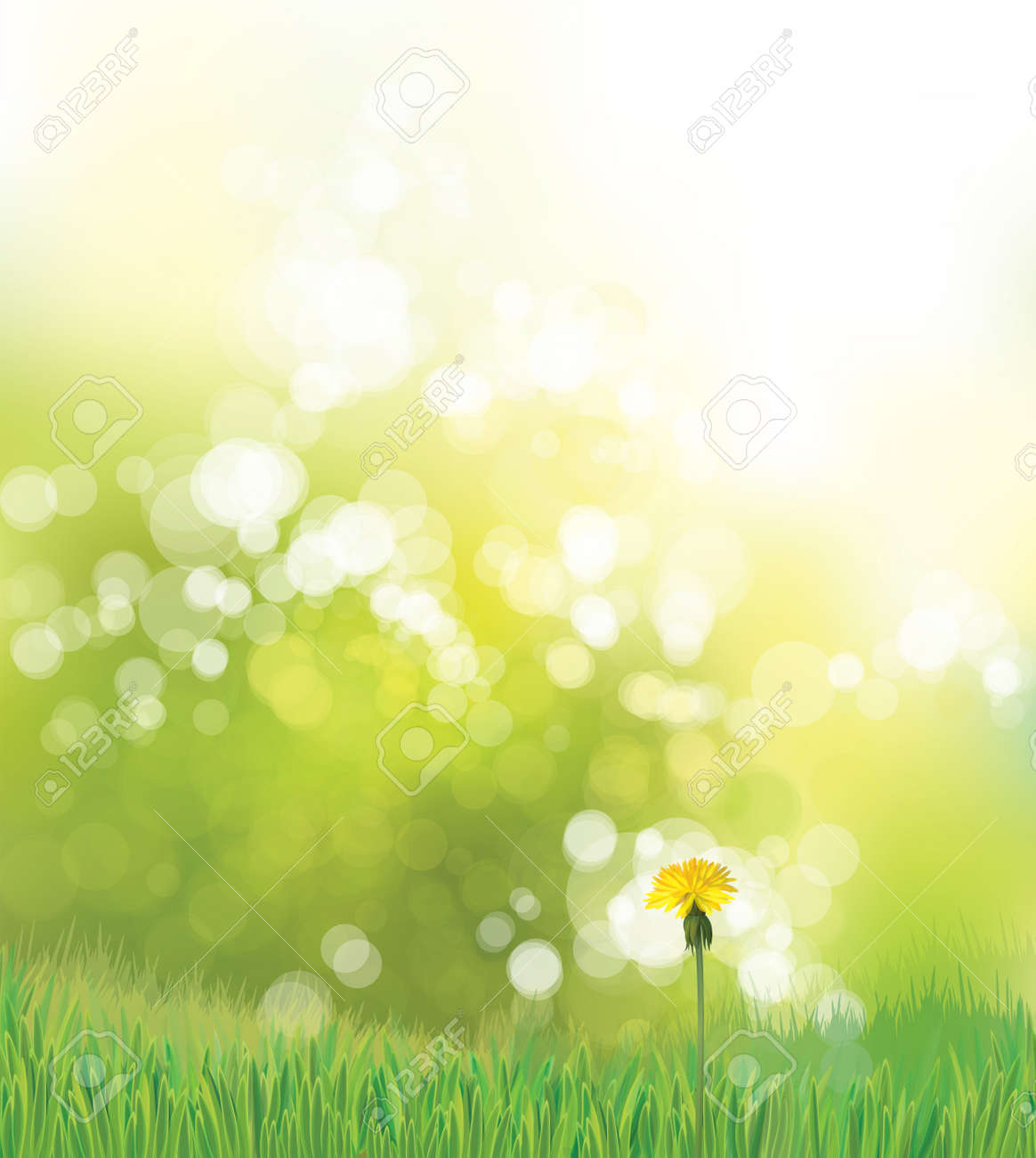 Vector spring background with yellow dandelion. - 125607786