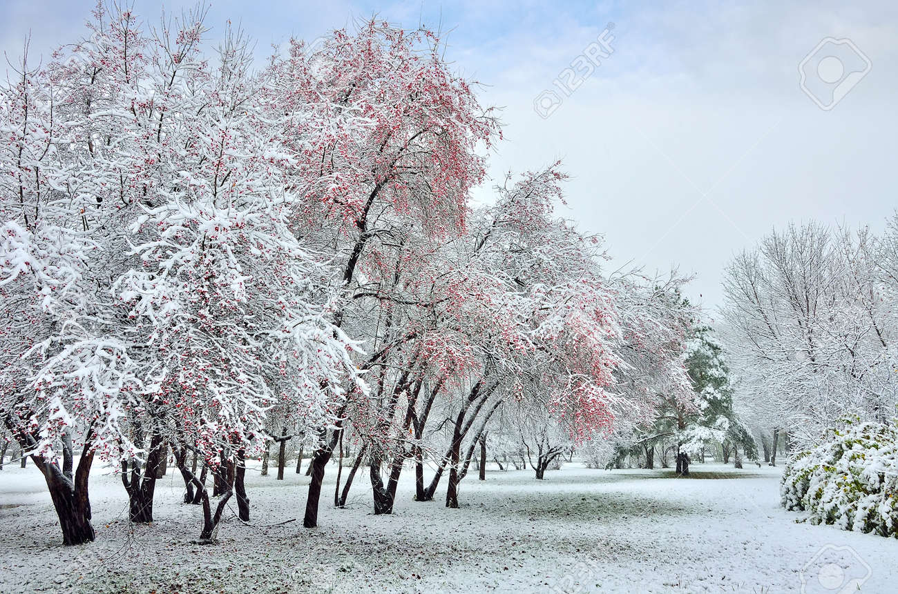 Rüyada Zamansız Mevsimsiz Kar Görmek