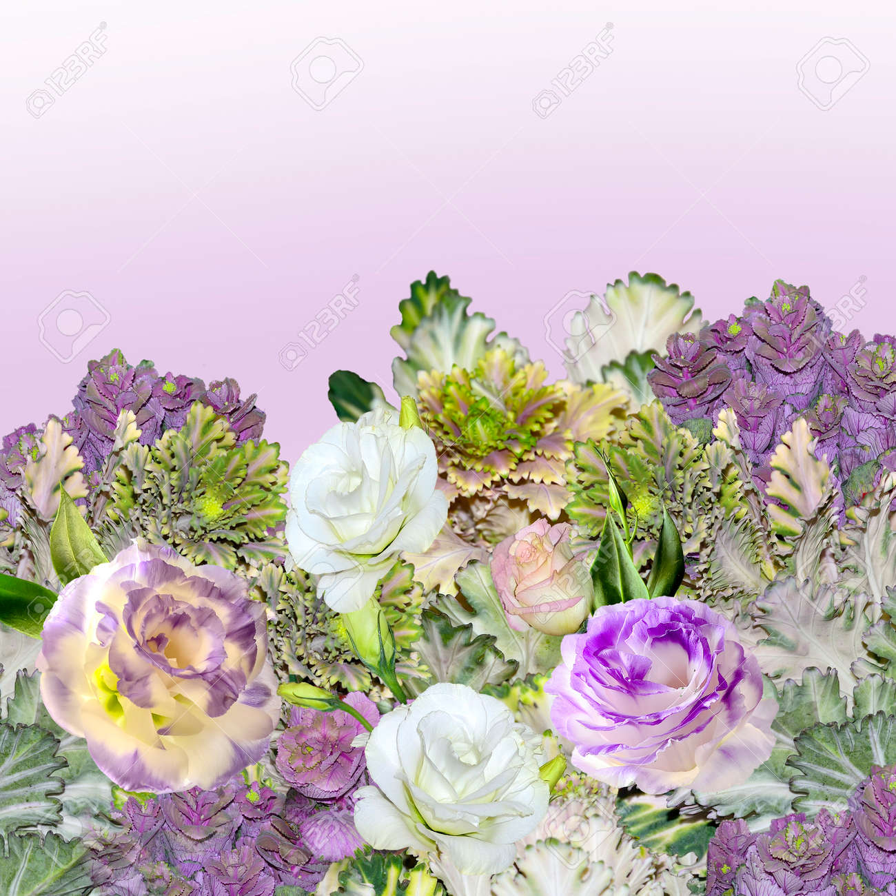 Floral border with bouquet of purple with white eustoma lisianthus floral border with bouquet of purple with white eustoma lisianthus flowers and ornamental cabbage altavistaventures Choice Image