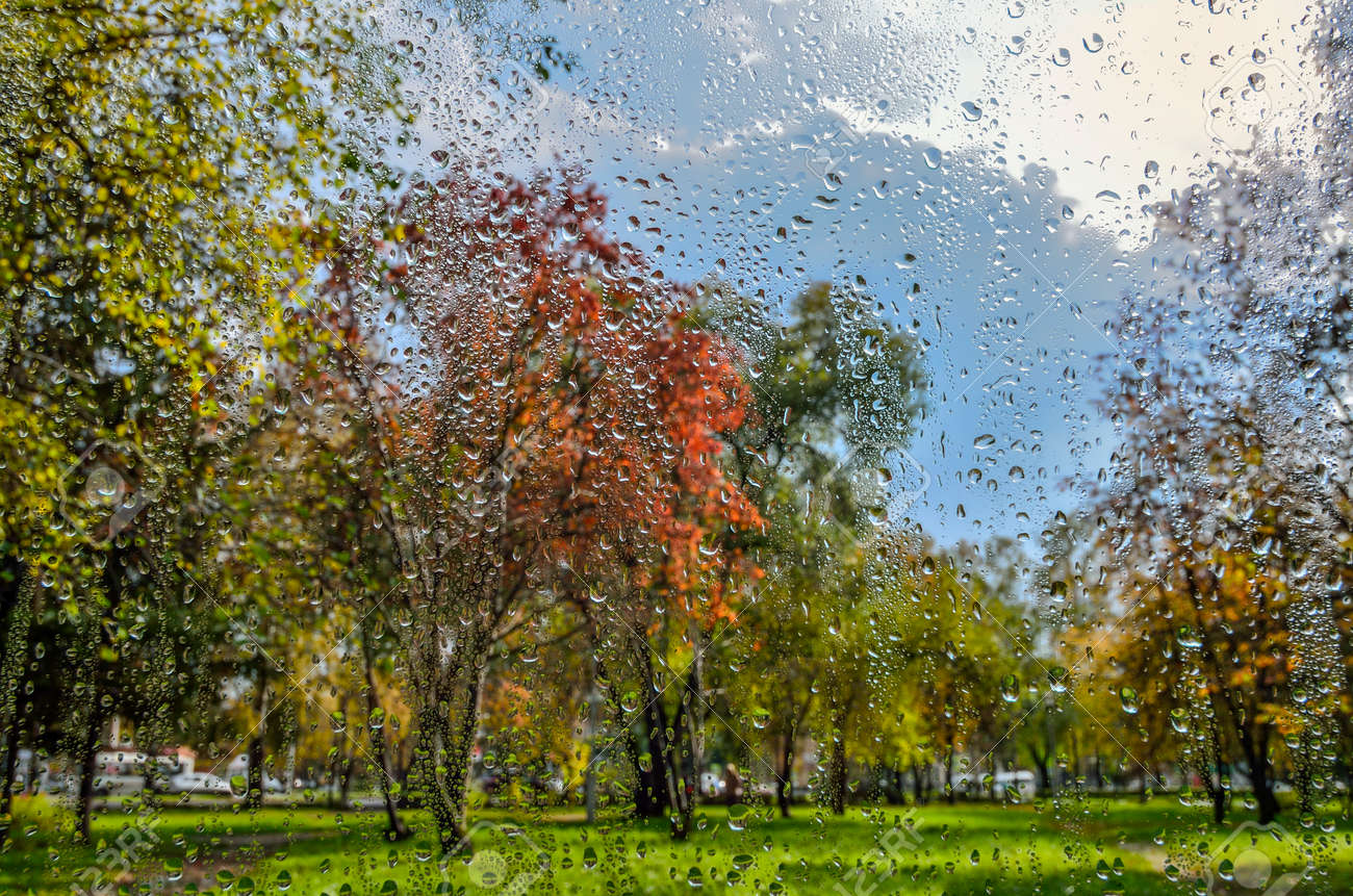 Bright Colorful Autumn Blurred Landscape In City Park With Wet Stock Photo Picture And Royalty Free Image Image 118885706