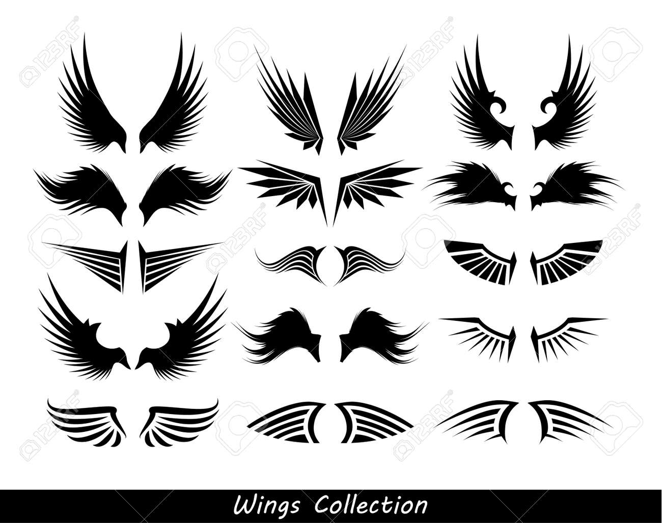 wings collection (set of wings) Stock Photo - 14648186