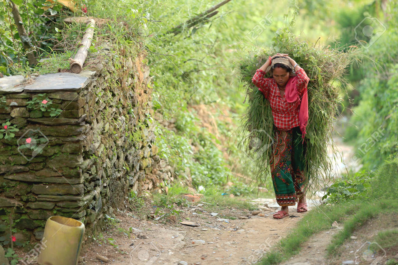 BANDIPUR, NEPAL - OCTOBER 7: Nepali young woman carries on her