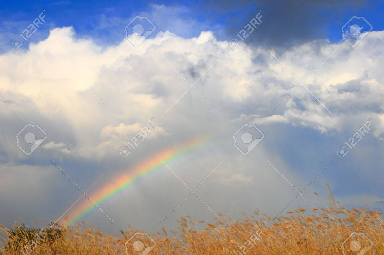 colorful Rainbow with white cloud and sunny sky Stock Photo - 10749751