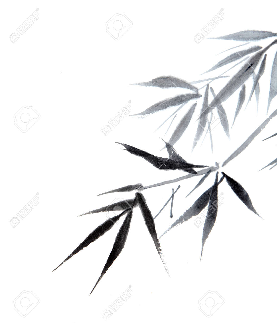 bamboo leaf , traditional chinese calligraphy art isolated on white background. Stock Photo - 20620613
