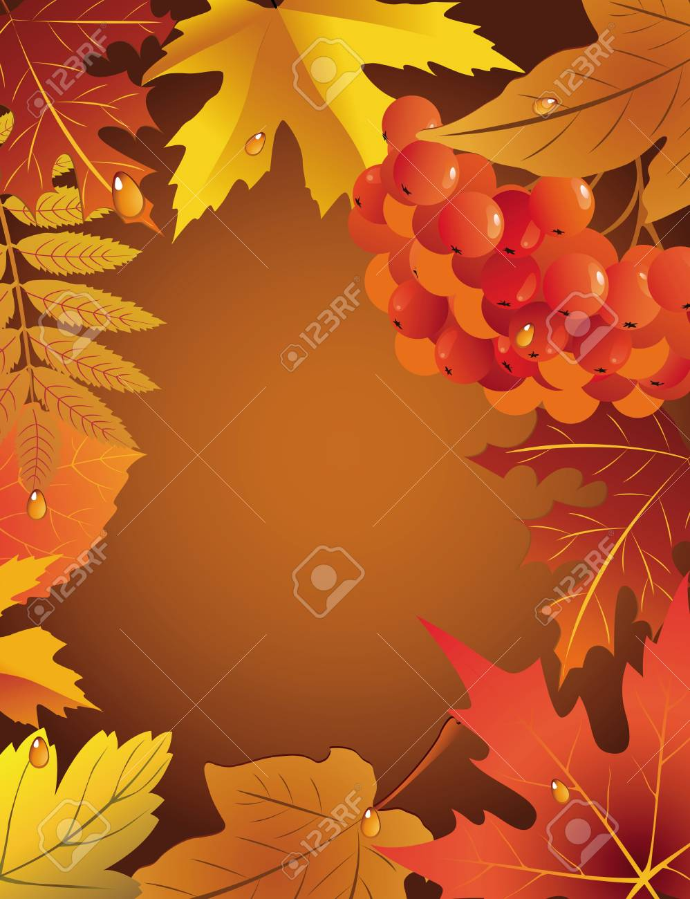Autumn card with leaves and a mountain ash branch Stock Vector - 23150365
