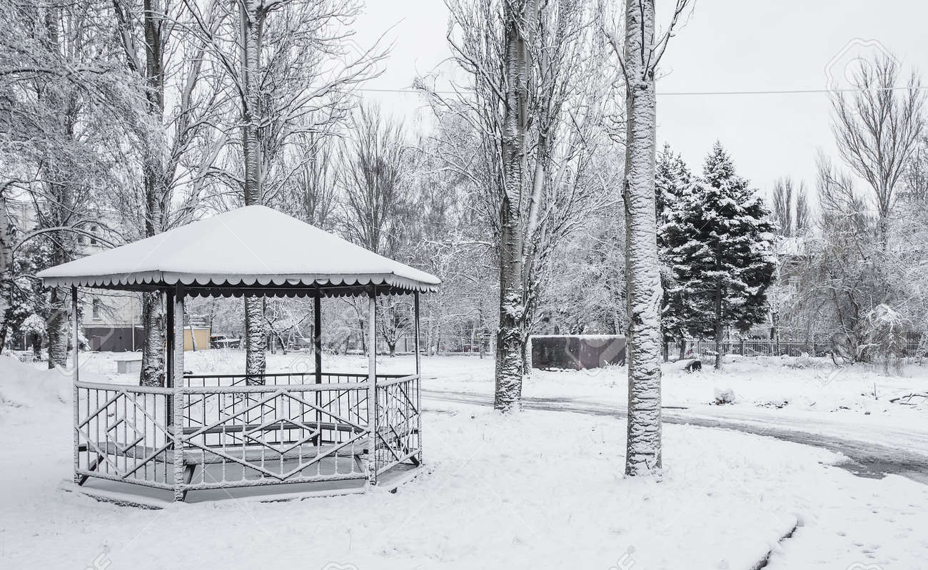 beautiful winter in the evening park in the city Stock Photo - 16756127