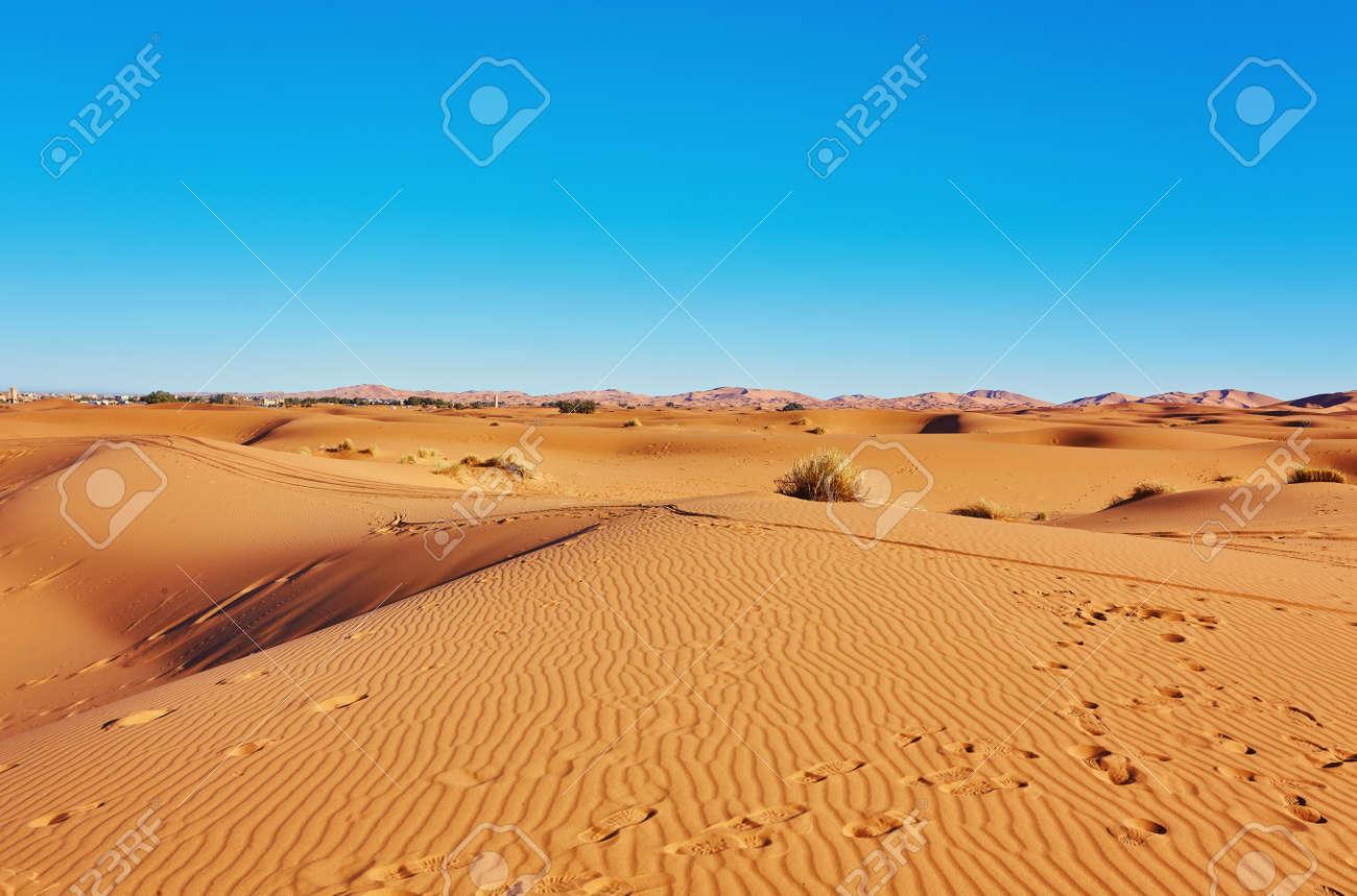 Sand dunes in the Sahara Desert, Merzouga, Morocco - 169020389