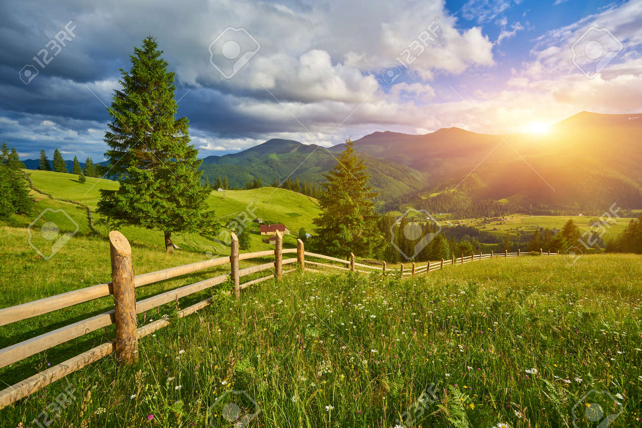 wooden fence on green meadow in mountains - 169020803