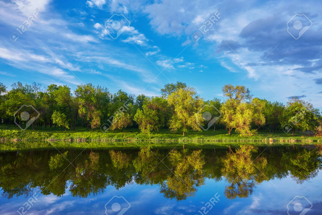 Beautiful river coast at sunset in summer. Colorful landscape with lake, green trees and grass, blue sky with multicolored clouds and orange sunlight reflected in water. Nature. Vibrant scenery - 169021489