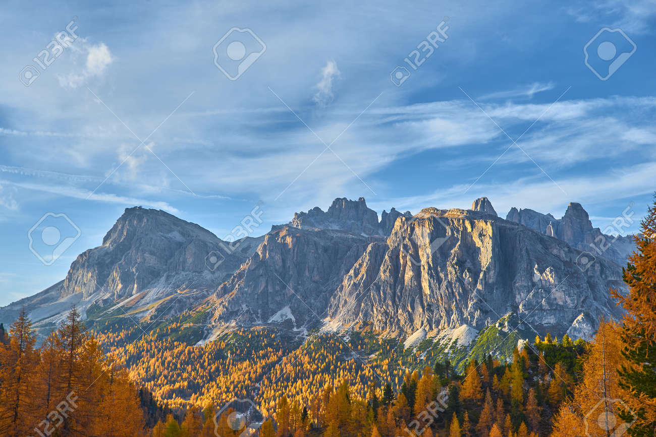 View of Tofane mountains seen from Falzarego pass in an autumn landscape in Dolomites, Italy. Mountains, fir trees and above all larches that change color assuming the typical yellow autumn color - 172022696