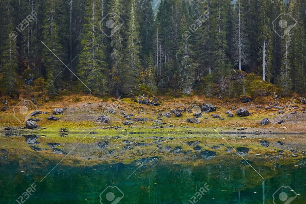 Carezza lake, Val di fassa, Dolomites Alps Italy - 173011379