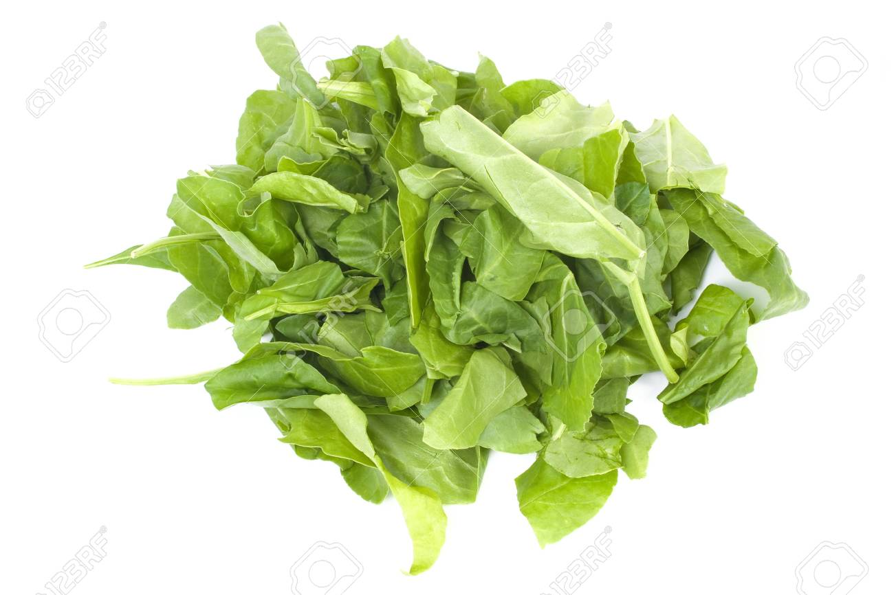 Spinach leaves isolated on white background Stock Photo - 7294593