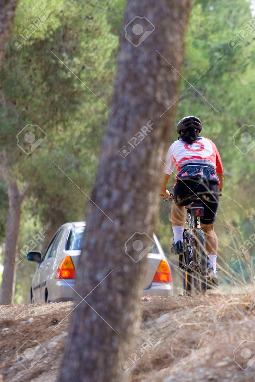 Mountain bike in a forest Stock Photo - 9009837